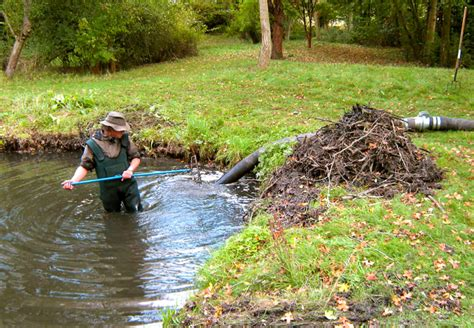 how to clean a backyard pond denchworth ponds and gardens