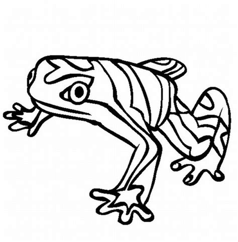 Pics photos free forest animals coloring pages