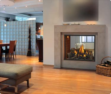 Two Sided Fireplace Indoor Outdoor - hd81 see thru gas fireplace modern indoor fireplaces by napoleon fireplaces