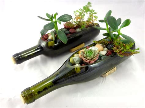 How To Make A Wine Bottle Planter by Wine Bottle Garden Succulent Complete Planter Kit By