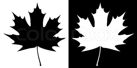 Monochrome Home Decor double maple leaf silhouette stock vector colourbox