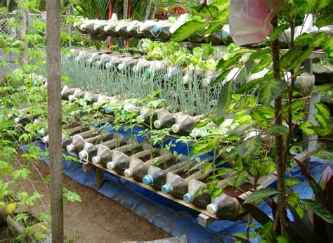 Ideas For Gardening Plastic Container Gardening Ideas Ideas Home Inspirations