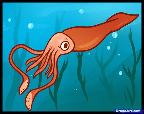 Sketch Online Free how to draw a giant squid giant squid step by step sea