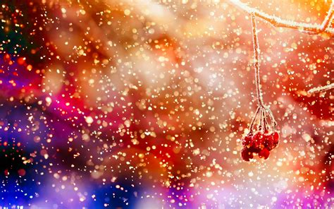 colorful winter wallpaper winter 02 berry wonderland 13februari2015friday red