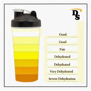 color of urine when dehydrated dehydration urine color chart pictures to pin on