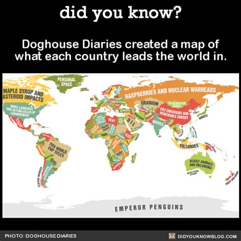 dog house diaries did you know doghouse diaries created a map of what each