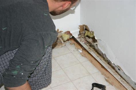 Was Tun Gegen Schimmel In Der Wohnung 4167 schimmel in der wohnung