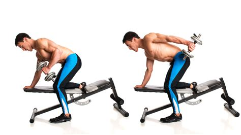 triceps on bench 7 dumbbell exercises to tone your triceps fitness republic