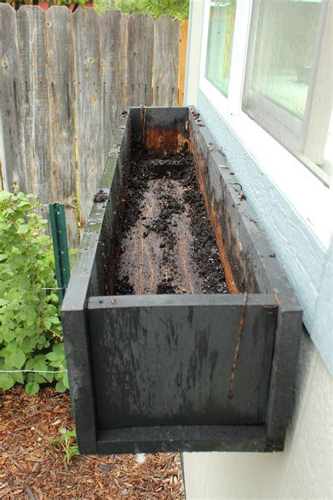 step  step guide  planting  window box