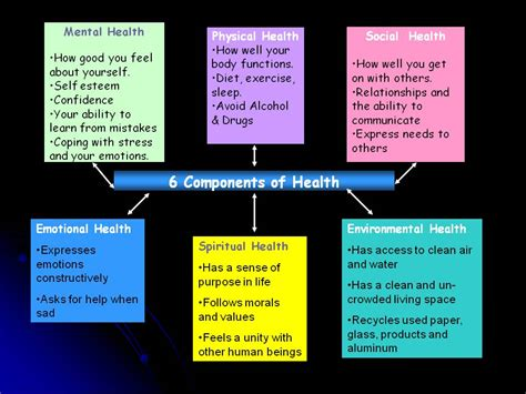 six components of health 171 mrs valerie birchenall s