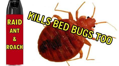 rid  bed bugs raid ant roach spray zaps  instant youtube