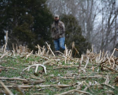 Best Place To Buy A Shed Get Muddy Muddy Outdoors Muddy Outdoors
