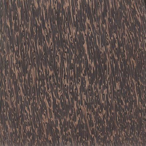 palm woodwork black palm the wood database lumber identification