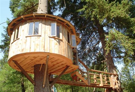nice tree houses nice tree houses green living eco nature go green