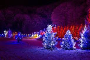 Christmas lights decorate your outside christmas trees and walkway