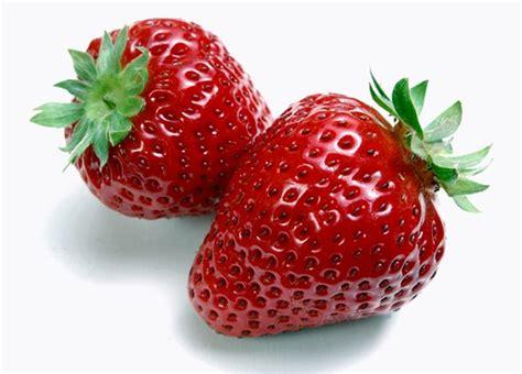 tentang buah strawberry buah strawberry adalah vitamin ibu