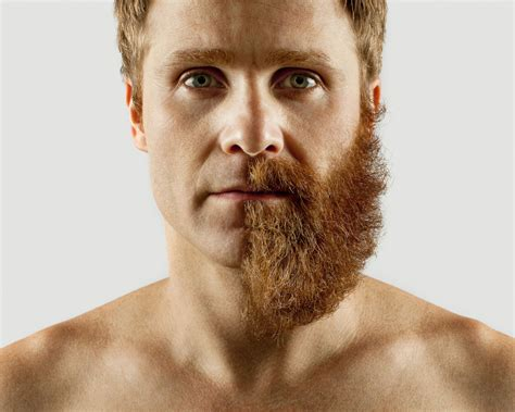 what do they call latest beard fad what do we do with our beards during the summer months
