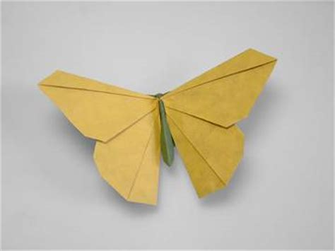 Advanced Origami Flowers - origamido quot advanced origami quot gallery 02 origamido butterfly