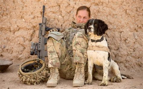 army dogs army handler ally