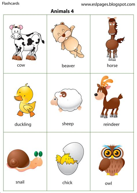 farm animal flash cards printable science pinterest esl pages animals