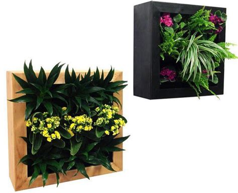 Wall Planter Indoor by Gsky Retail Living Wall Planter Vertical Gardens