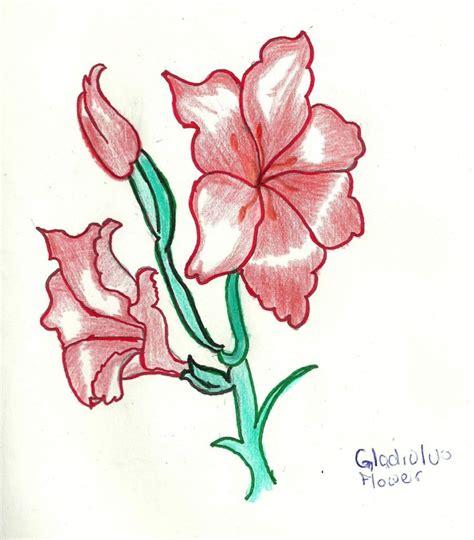 How To Draw Gladiolus