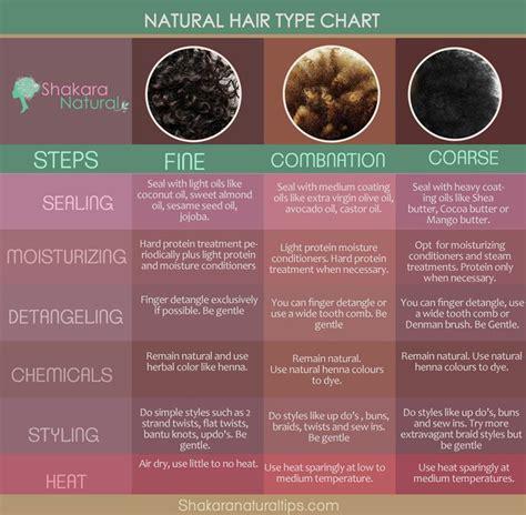 Types Of Hair Chart by Hair Type Chart Www Shakaranaturaltips