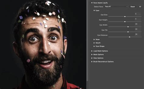 reset liquify tool photoshop how to adjust and change facial features adobe photoshop