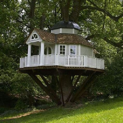 33 best images about tree houses on pinterest disney villas and resorts best tree house ever maisonnettes pinterest