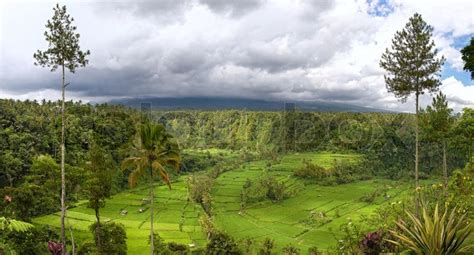 search photos panorama jakarta panorama of valley with rice field terraces and view on