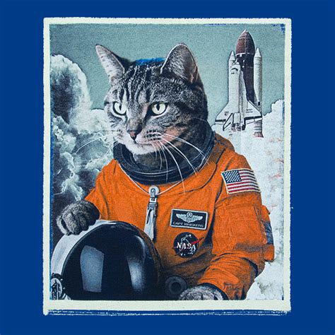 Awesome Home Office by Space Cat Take Off Tee Exclusive Thinkgeek