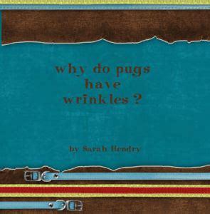 why do pugs wrinkles why do pugs wrinkles photo book