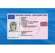 How To Check Your Driving Licence Online  Confusedcom