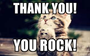 Thank You Cat Meme - thank you meme cat www pixshark com images galleries