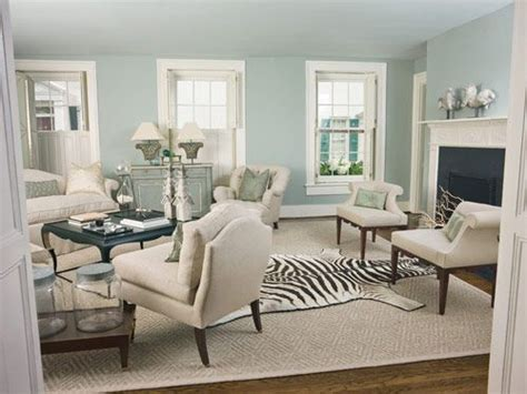 animal rugs for living room pale blue lounge feature wall carpets colors and veranda magazine