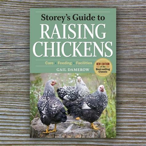 guide to raising backyard chickens storey s guide to raising chickens book by gail damerow