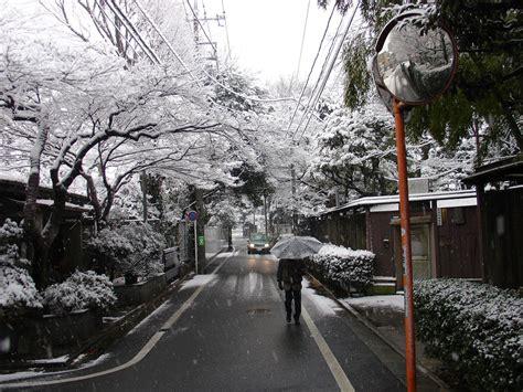 november tokyo tokyo japan weather november 2011