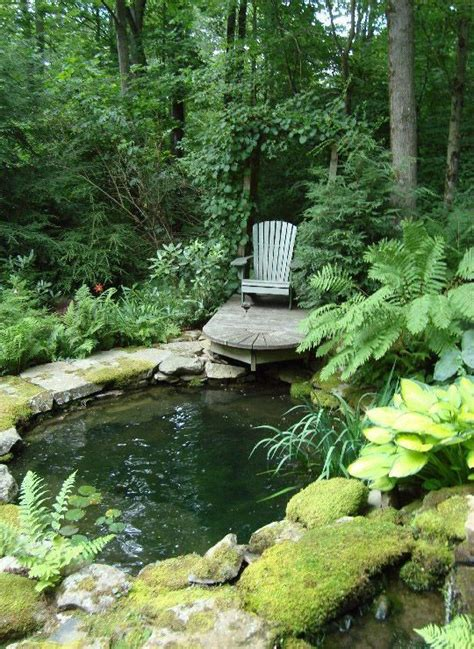 backyard pond landscaping 1000 ideas about garden ponds on pinterest ponds