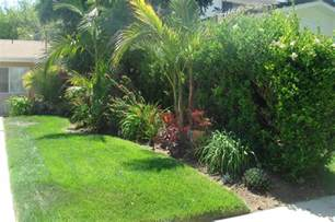 tropical landscaping ideas glamorous tropical landscaping ideas for front yard pics