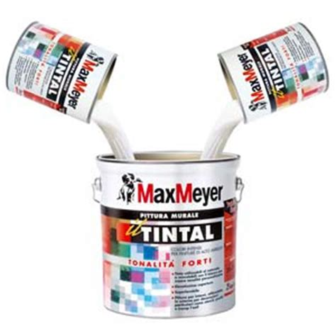 pittura murale per interni colorata pittura murale colorata superlavabile tintal tinte forti