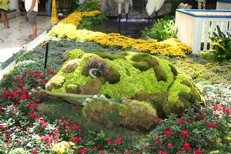 file 101 bellagio gardens jpg wikimedia commons