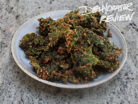 dehydrator recipe kale chips with cashews dried tomatoes