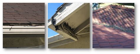 common causes for roof leaks