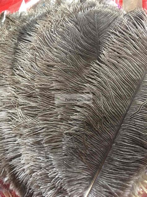 white ostrich feathers for sale centerpieces on sale narrow ostrich feathers wholesale dozen bulk 12