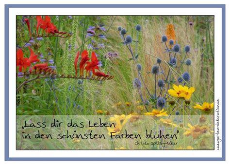 Holz Postkarten Drucken Lassen by Postkarte Quot Lass Dir Das Leben In Den Sch 246 Nsten Farben