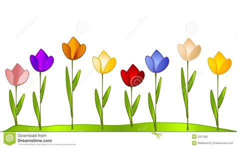 garten tulpe tulpe garten reihe der tulpen stockfotografie bild 2257992