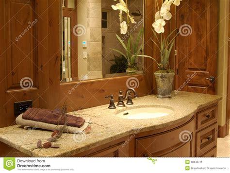 stanze da bagno di lusso stanza da bagno di lusso immagine stock immagine 13443711