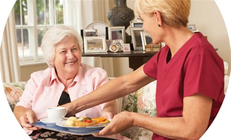 in home care elderwood home care senior home care providers massachusetts