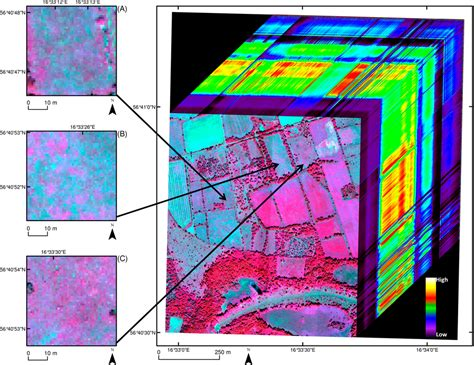 remote sensing  full text classification  grassland successional stages  airborne
