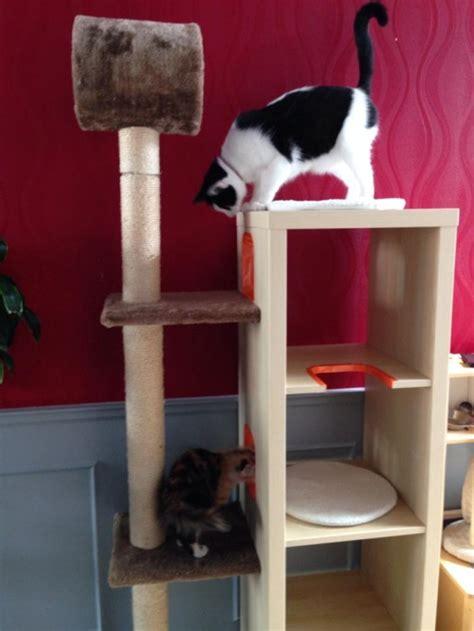 muebles para los gatos de la cremallera kallax